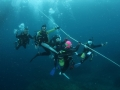 fun-dive010